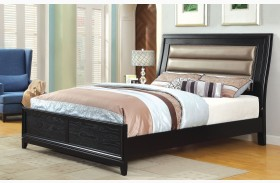 Golva Black  Panel Bed