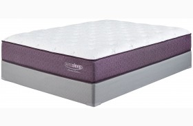 M967 Limited Edition Plush Mattress With Foundation