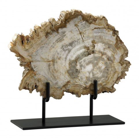 Petrified Medium Wood On Stand