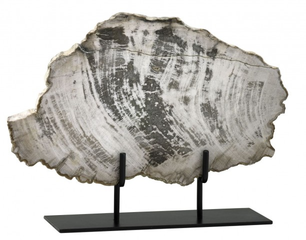 Petrified Large Wood On Stand