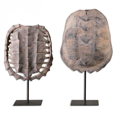 Turtle Shells Set of 2