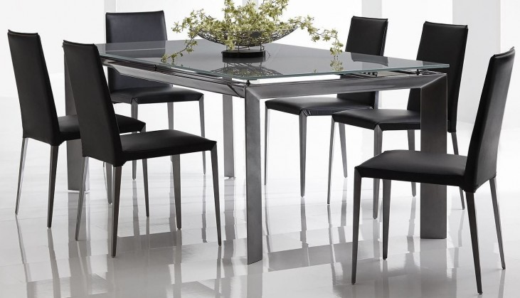Rado Extendable Rectangular Dining Room Set