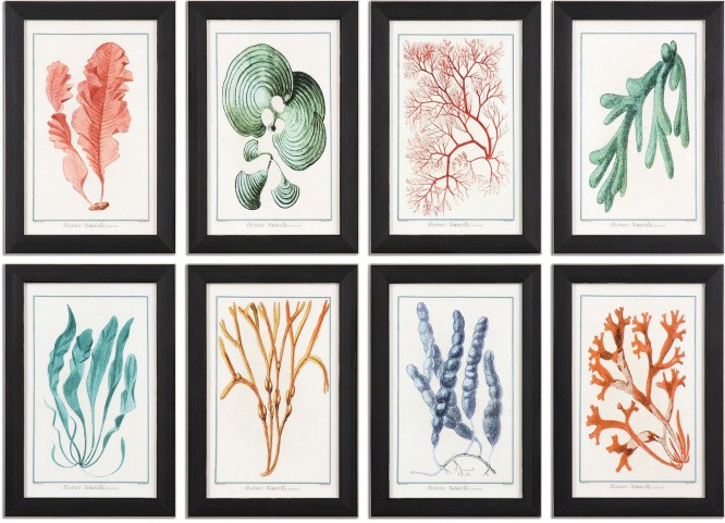 Colorful Algae Framed Art Set of 8