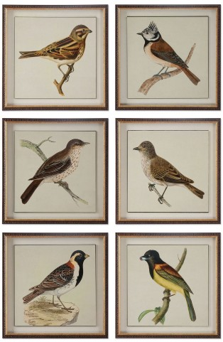 Spring Soldiers Bird Prints Set of 6