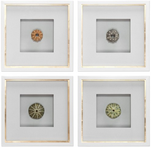 Sea Urchins Shadow Box Art Set of 4