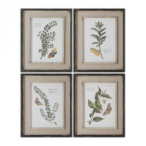 Butterfly Plants Framed Art Set of 4