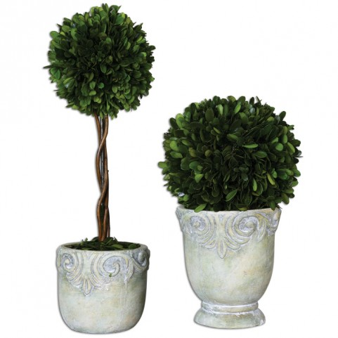 Preserved Boxwood Ball Topiaries Set of 2