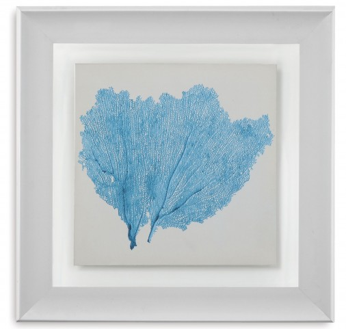 Sea Fan IV Wall Art