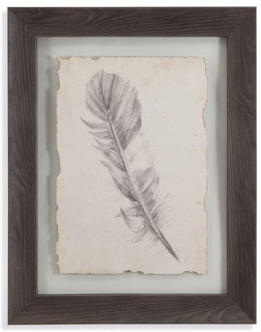 Feather Sketch I Wall Art