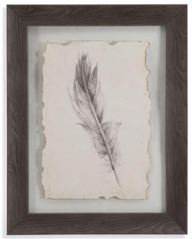 Feather Sketch IV Wall Art