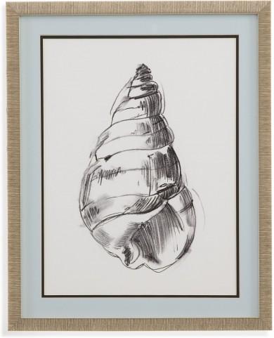 Shell Sketch V Wall Art