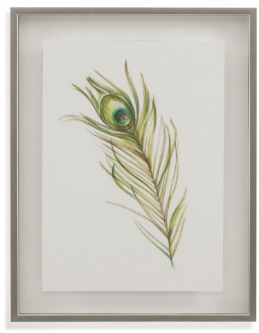 Watercolor Peacock Feather I Wall Art