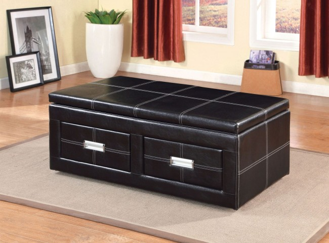 Ostel 2 Drawer Lift-Top Storage Ottoman