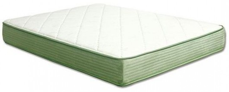 "Harmony III White and Green 10"" Queen Tight Top Top Mattress"