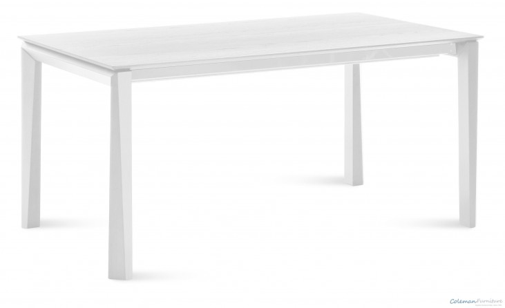 Universe White 111 inch Rectangular Table