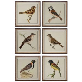 Spring Soldiers Bird Prints Set of 6