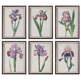 Iris Beauties Floral Prints Wall Art Set of 6