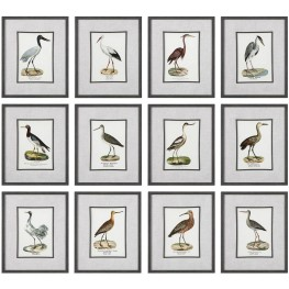 Seashore Gray Birds Prints Set of 12
