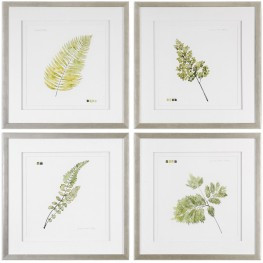 Watercolor Green Leaf Study Prints Set of 4