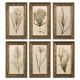 Wheat Grass Framed Art Set of 6