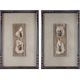 Fossilized Insects Art Set of 2