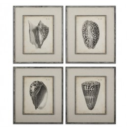 Vintage Diderot Shells Art Set/4