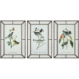 Warblers White Bird Prints Set of 3