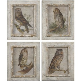 Owls Framed Art Set of 4