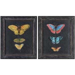 Butterflies On Slate Black Prints Set of 2