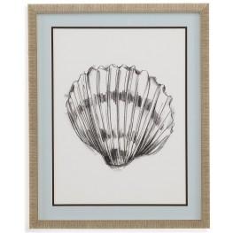 Shell Sketch VI Wall Art