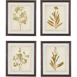 Dyani Multi Wall Art Set of 4