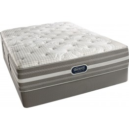 Recharge Chasewood Queen Plush Mattress with Foundation