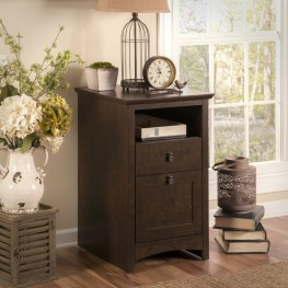 Buena Vista 2-Drawer Pedestal