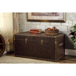 Gemm Brown Storage Trunk