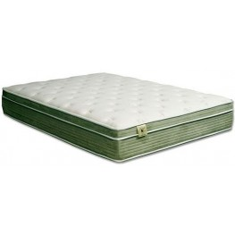 """Harmony II White and Green 12.5"""" Queen Euro Pillow Top Mattress"""