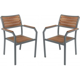Minsk Outdoor Gray Patio Dining Chair Set of 2