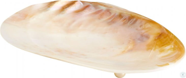 Abalone Pearl Small Tray