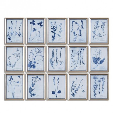 Dried Flowers Floral Art Set of 15