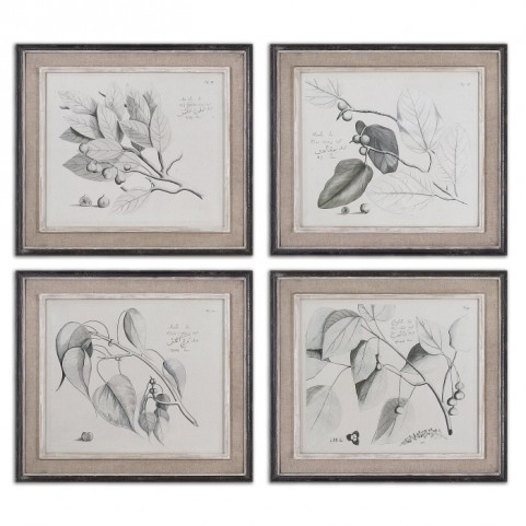 Sepia Leaf Study Wall Art Set of 4