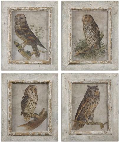 Owls Framed Art Set of 4