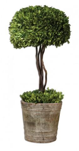 Tree Topiary Preserved Boxwood