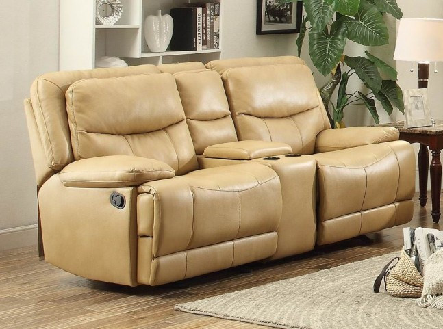 Risco Honey Double Glider Reclining Console Loveseat