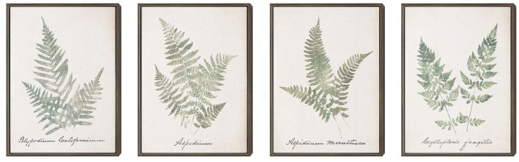 Leafy Prints Wall Art With Frame Set of 4