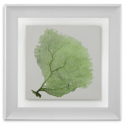 Sea Fan IX Wall Art