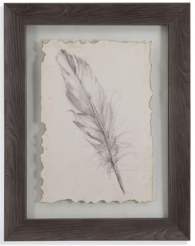 Feather Sketch III Wall Art