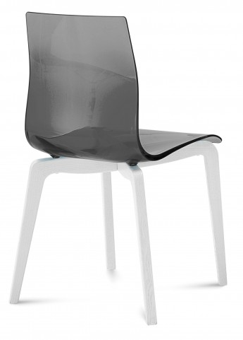 Gel Transparent Smoke Chair White Mat Lacquered Frame Set of 2