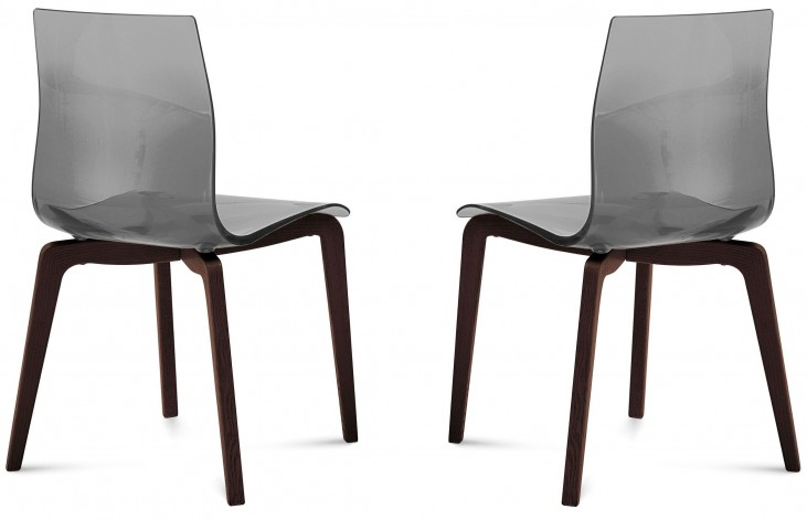 Gel Transparent Smoke Chocolate Frame Ashwood Chair Set of 2