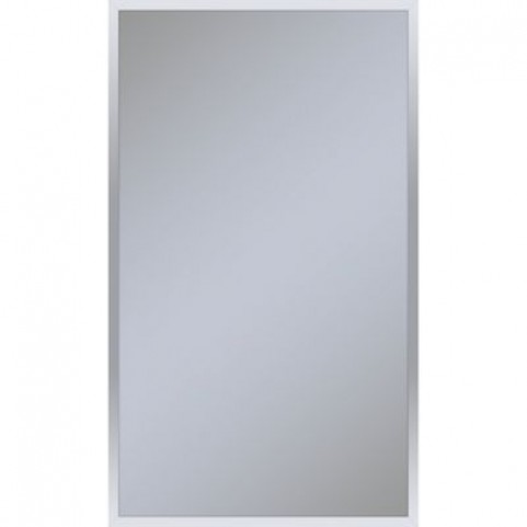 Profiles 24 X 40 Chrome Framed Mirror From Robern Coleman Furniture