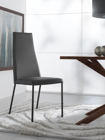 Sierra Skill Grey Lacquered Steel Chair Set of 2