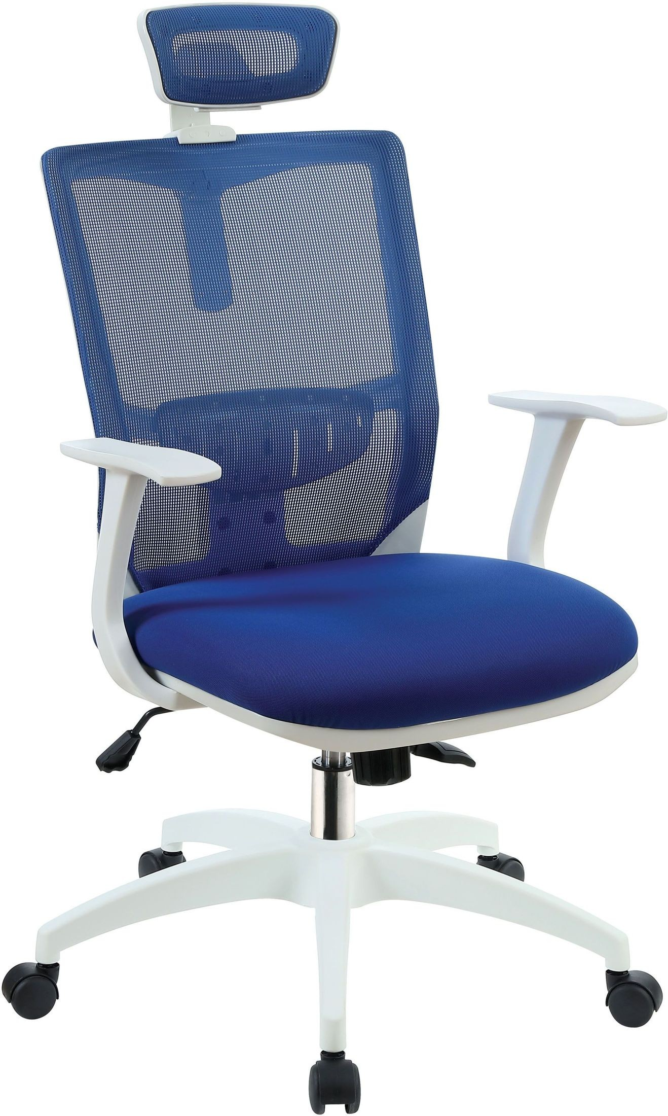 Sargas blue office chair from furniture of america for Blue office chair